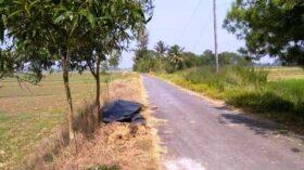 নওগাঁ জেলায় সড়ক ও জনপথ বিভাগ ৪২৪ কোটি টাকার উন্নয়ন কার্যক্রম সম্পন্ন